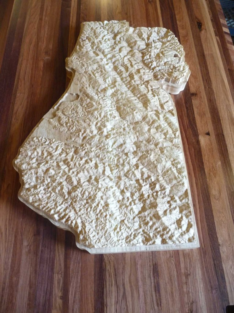Humboldt County Topographical Map Wooden Wall Art