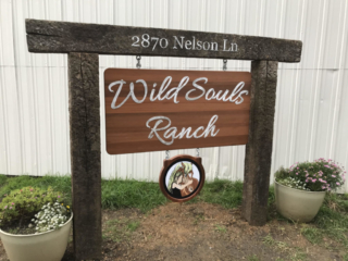 WoodLab Designs Metal and Wood Sign with color image Wild Souls Ranch