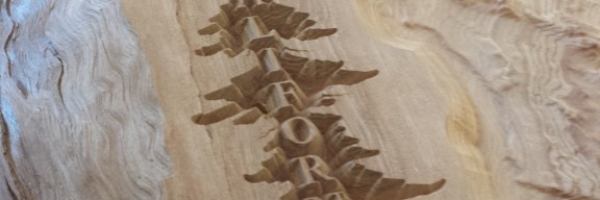 Laser Etched Wooden California Tree Detail