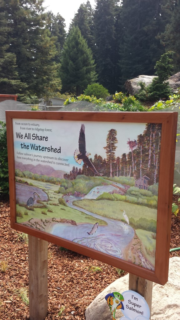 Sequoia Park Zoo Watershed signage