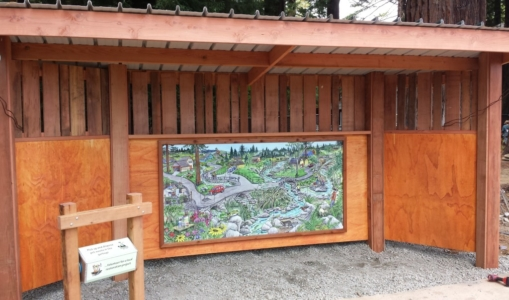 WoodLab Designs Sequoia Park Zoo Interactive Discovery signage