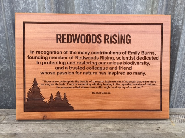 WoodLab Designs Redwood Rising Upcycled Redwood Wall Mounted Recognition Plaque