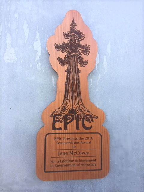 WoodLab Designs EPIC Environmental Advocacy Laser Etched Upcycled Redwood Award