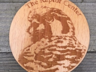 WoodLab Designs University of Minnesota Raptor Center Hawk Beech Wood Sticker